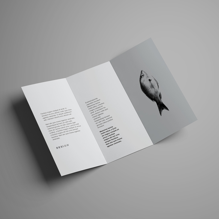 brochure-printhouse